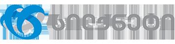 Silknet Logo